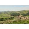 Продам большой дом в Абхазии с мандариновым садом